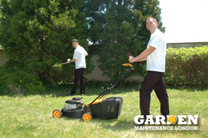 Garden Cleaning Danson Park