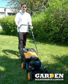 Garden Service Carshalton Central