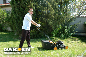 Garden Trimming Chingford Green